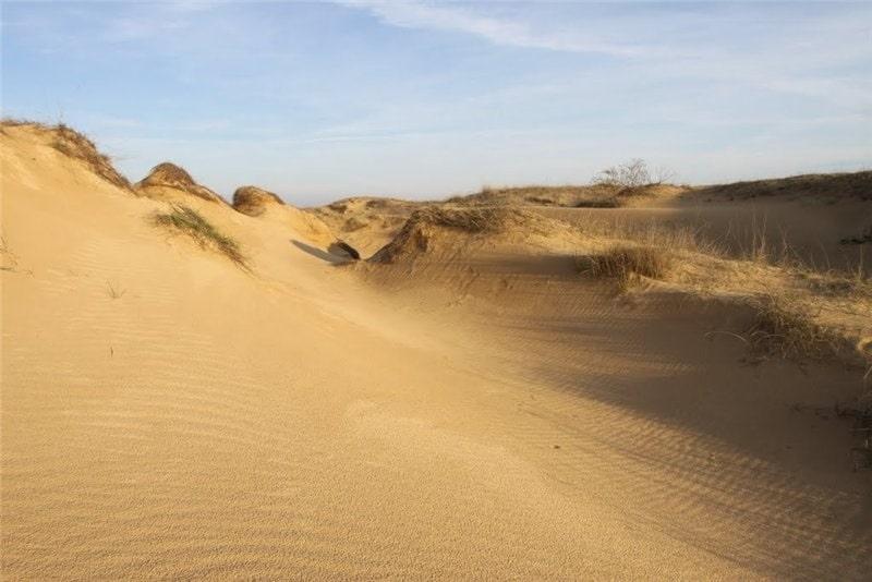Алешковские пески. Тур из Одессы